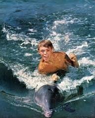 Cineracconto N° 2 - Flipper di Luca Bonatesta