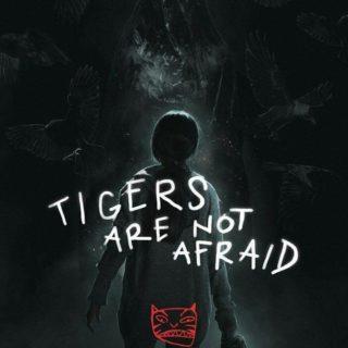 Tigers are not afraid di Francesca Bimbi
