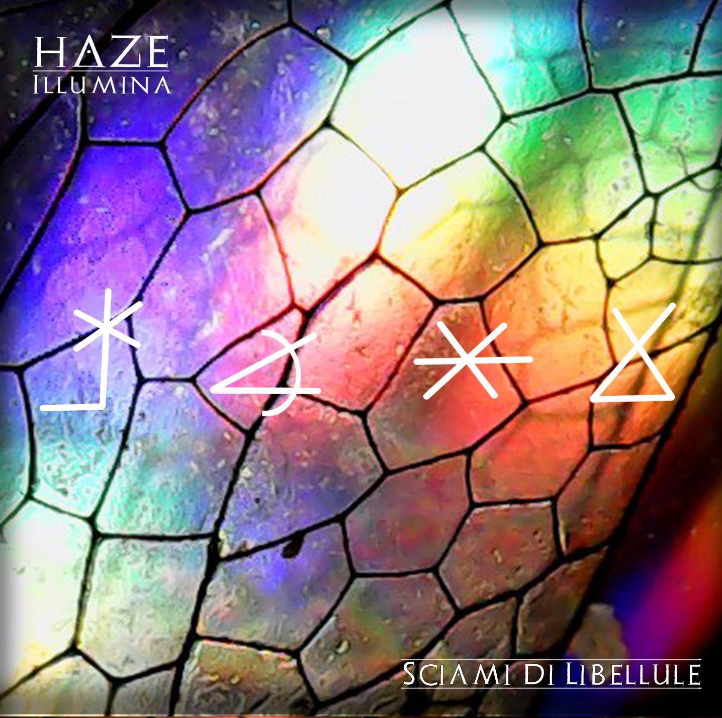 Sciami di libellule, nuovo album per gli Haze Illumina
